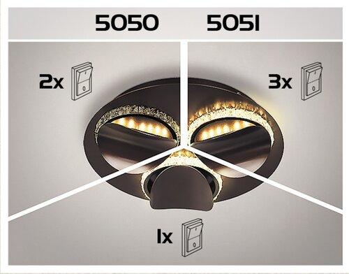 5050-99.jpg